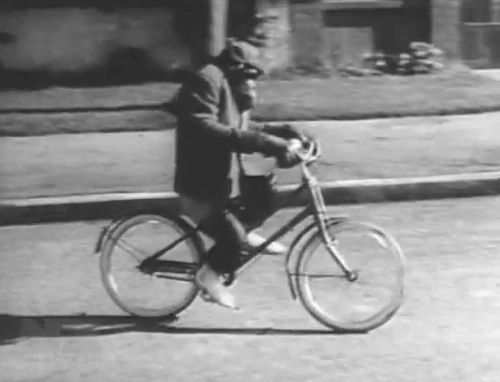 chimp bike photo.