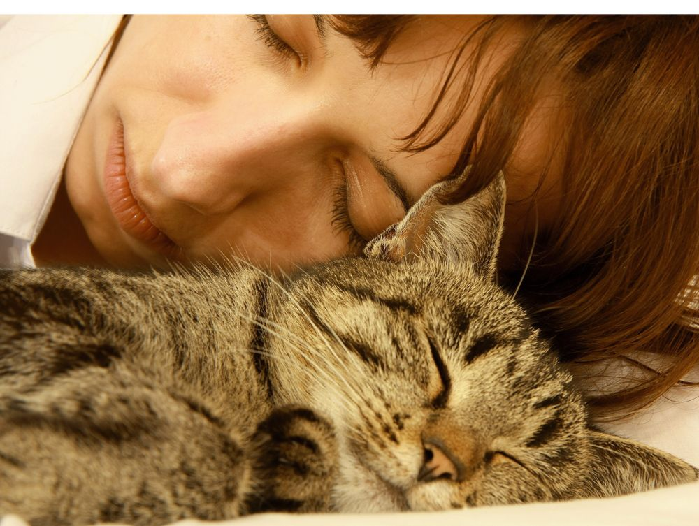 cat sleeping with woman