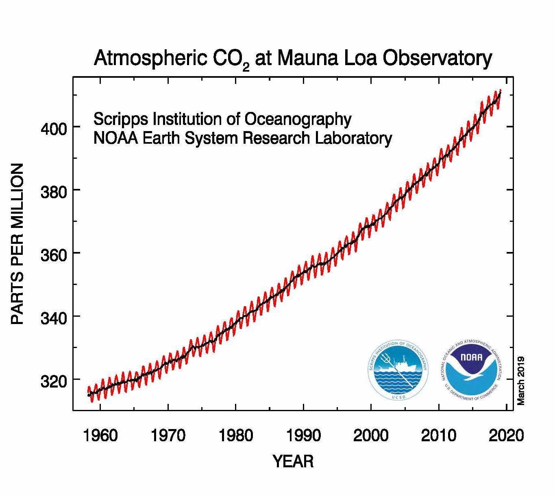chart of yearly CO2 ppm at Mauna Loa, 1960-2019