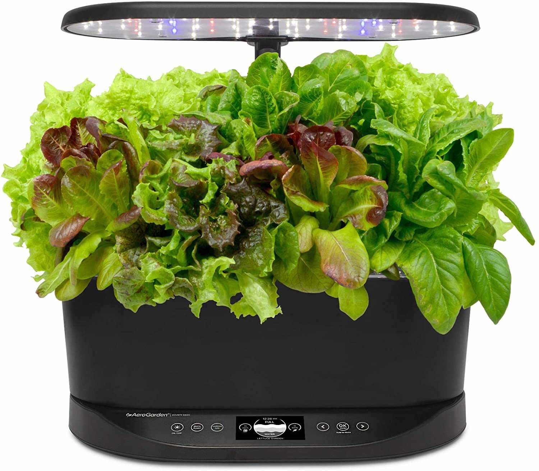Heirloom Salad Seed Pod Kit
