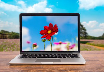 laptop showing a bright flower sits on a table in a field