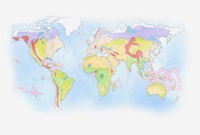 Illustration of Biomes