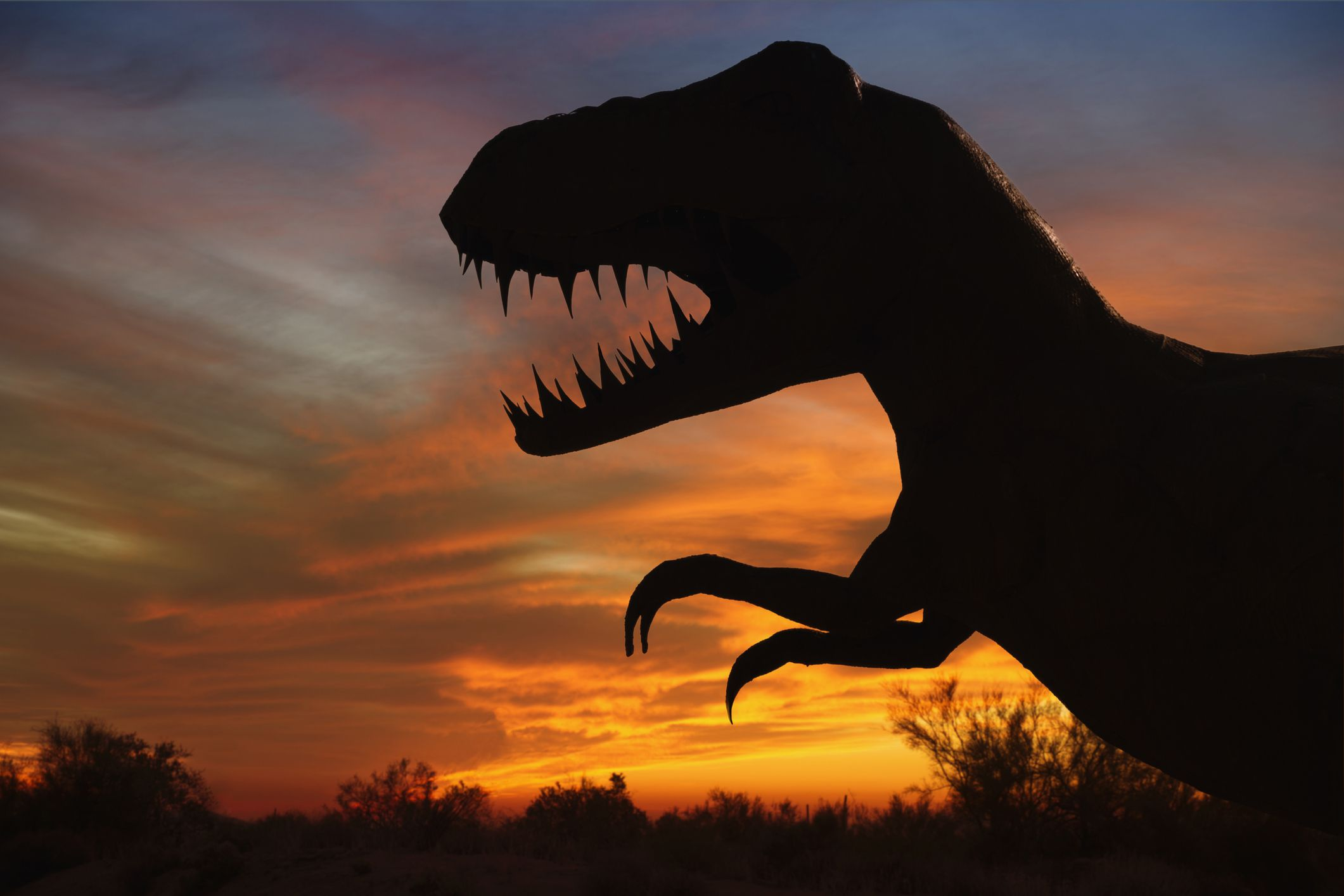 silhouette of t-rex sculpture at sunset, showing profile with large head and small, short arms