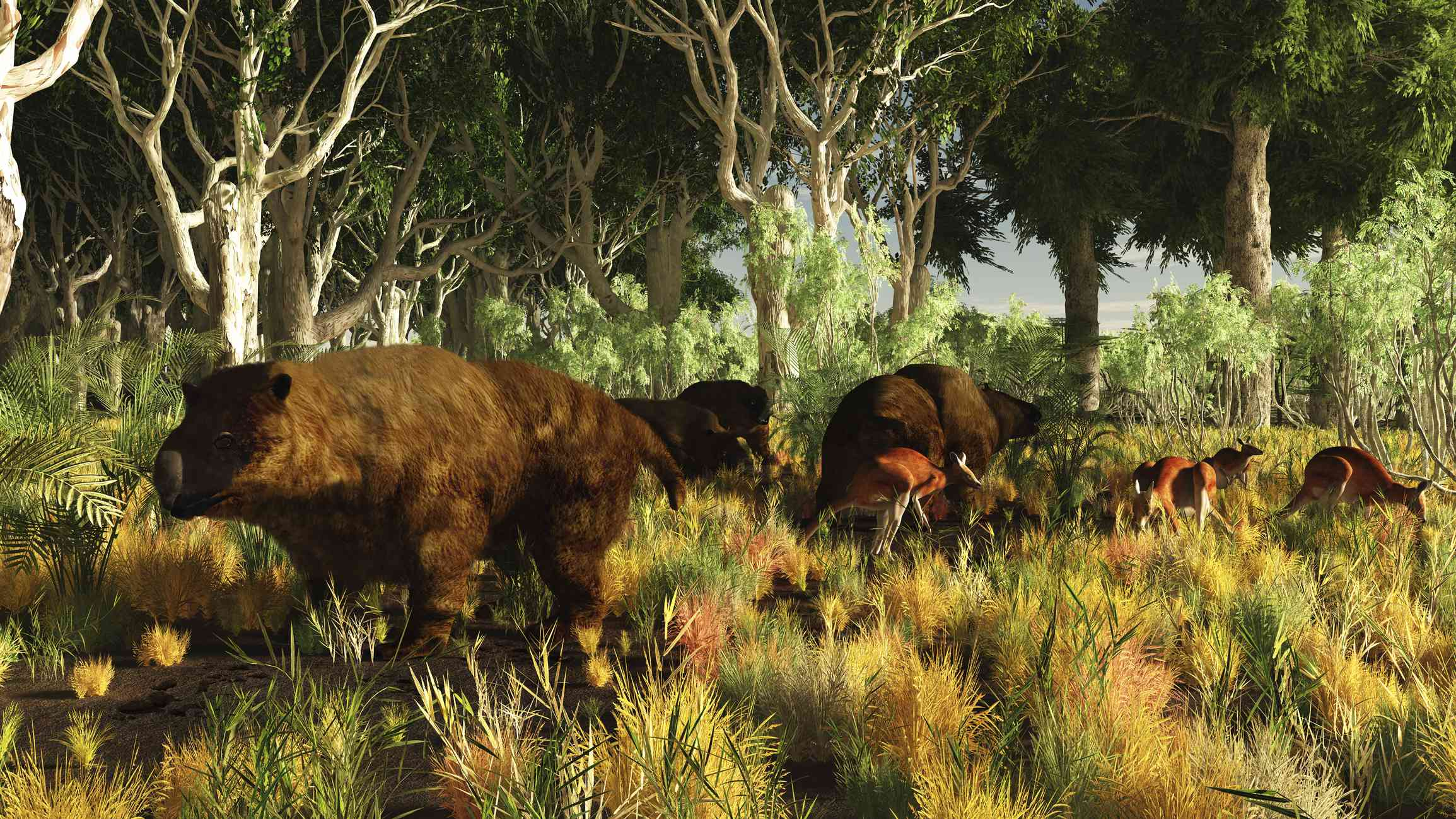 illustration of giant wombats standing in jungle clearing