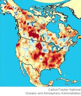 ¿Dónde termina todo el dióxido de carbono?