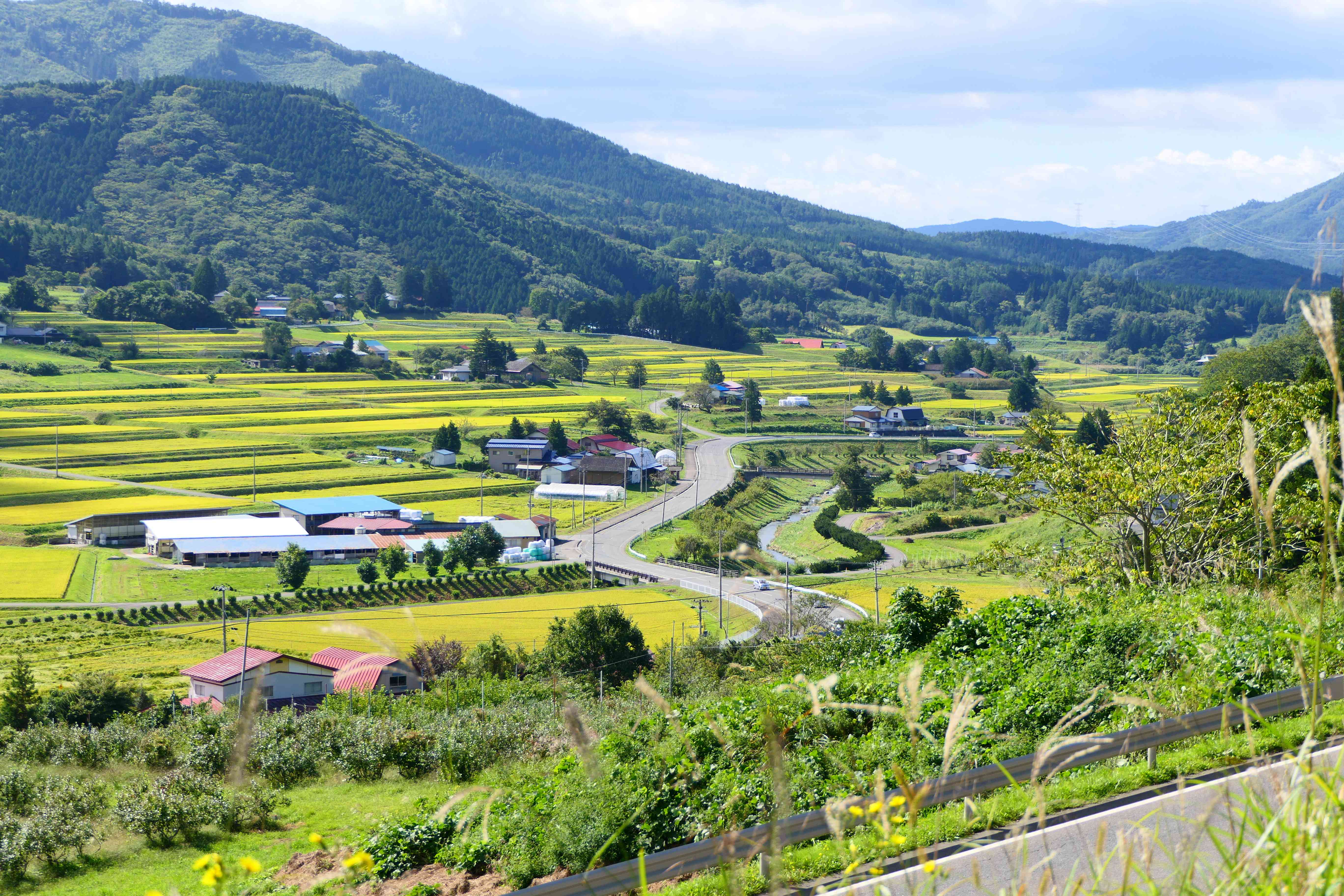 The beautiful valley in Tono, Japan on a bright day