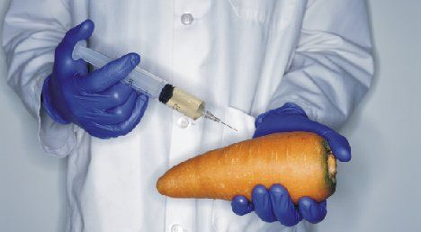 Scientist injecting food photo