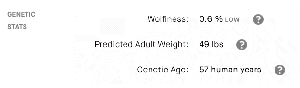 dog DNA test results example