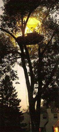 O2 Sustainability Treehouse