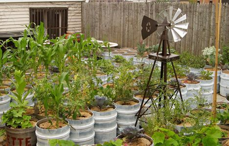 watercontainergardens.jpg