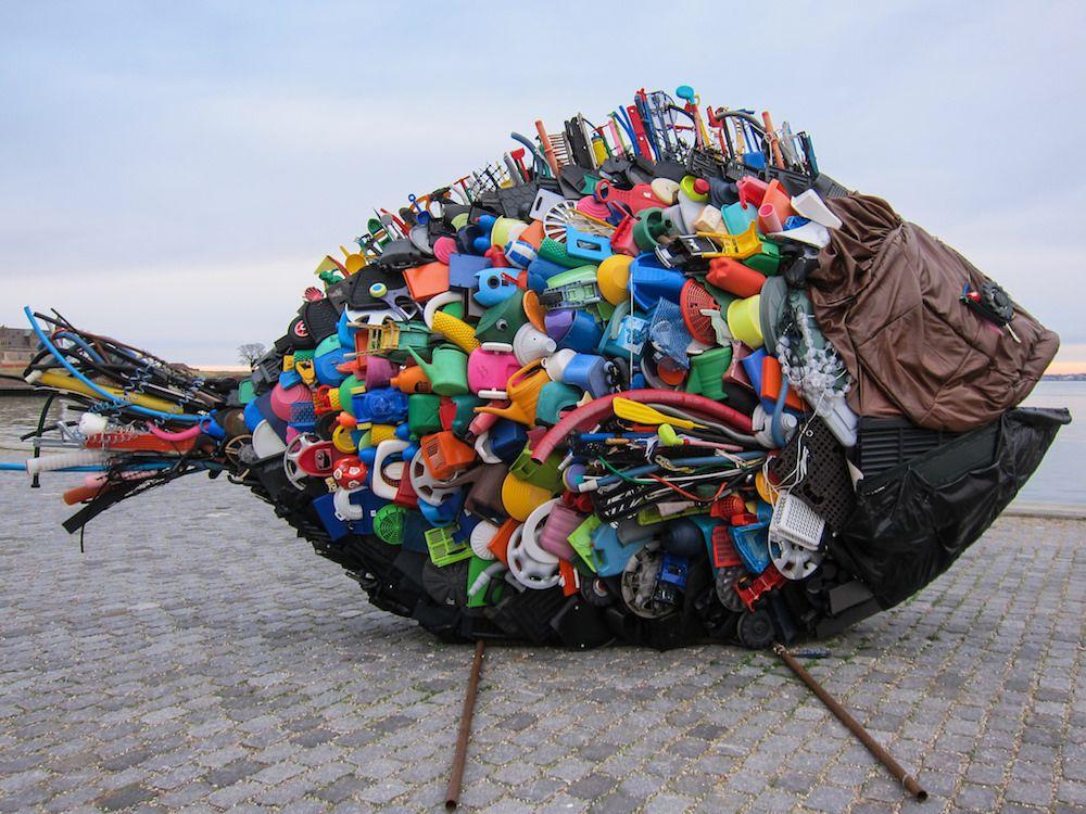 plastic-filled fish