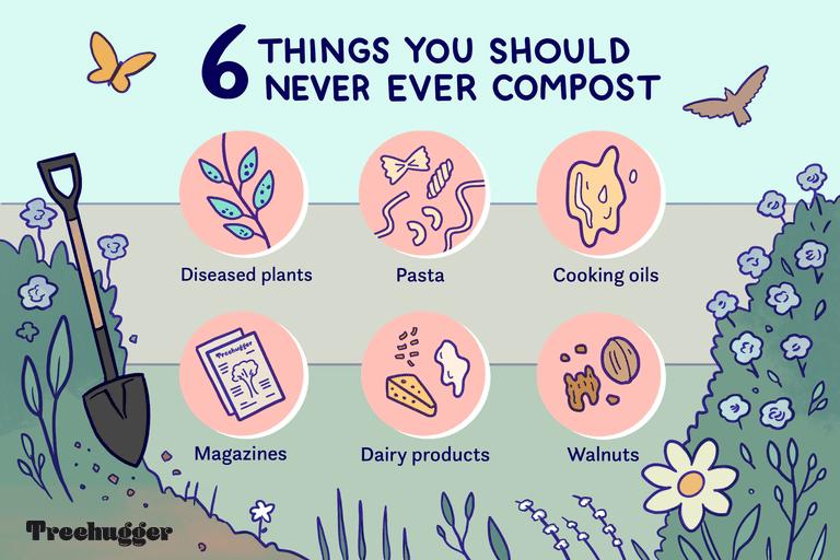 illustration showing six foods you should never compost