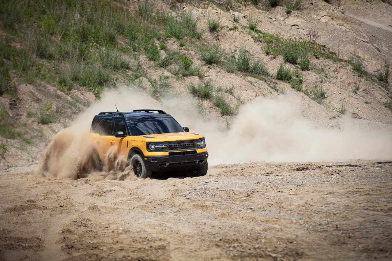 Bronco playing in sand