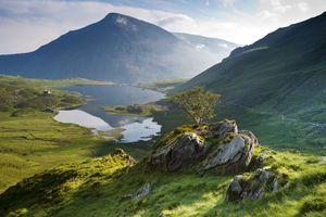 Mountains ecosystem