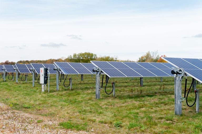 solar panels in open green field