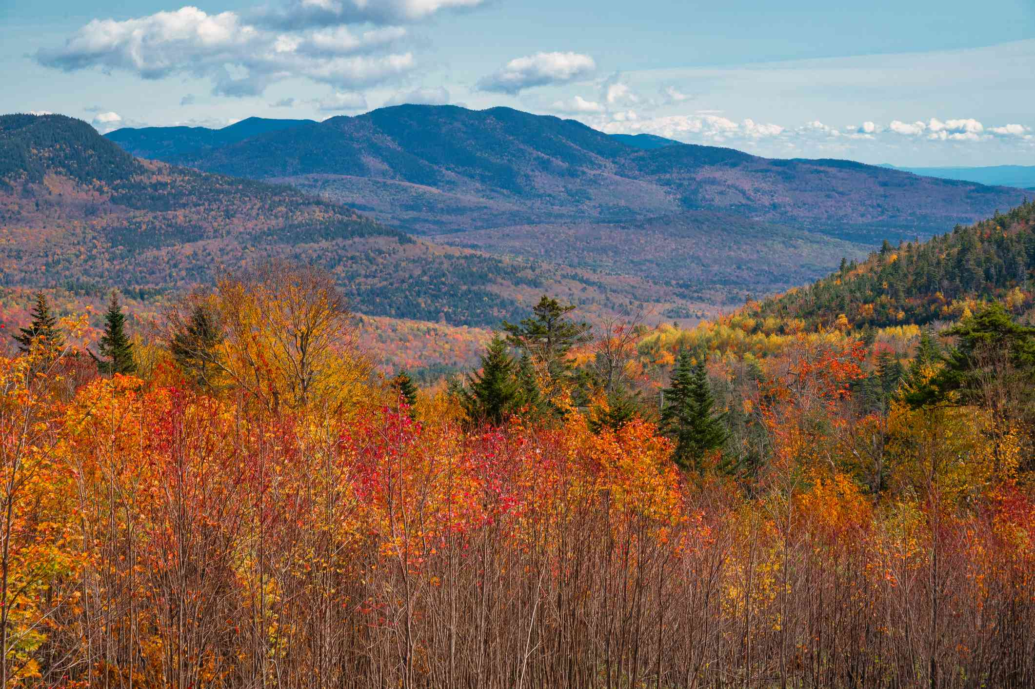 A lush forest of colorful trees in shades of red, gold, orange, and green along the Kancamagus Scenic Byway with the White Mountains in the distance under a blue sky with white clouds