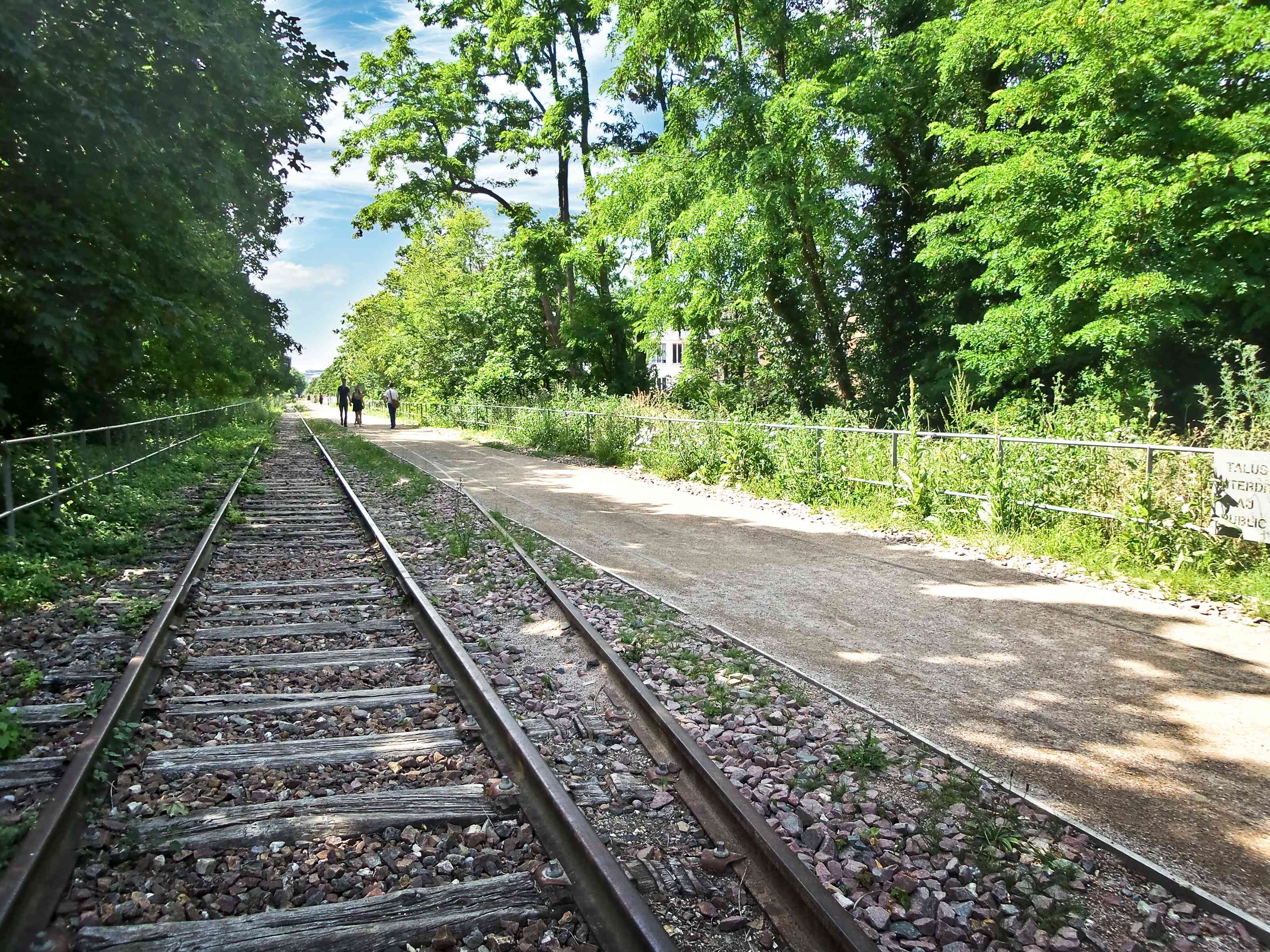 An abandoned portion of the train track next to a walking a path, and tall green trees that makes up Petite Ceinture in Pari,