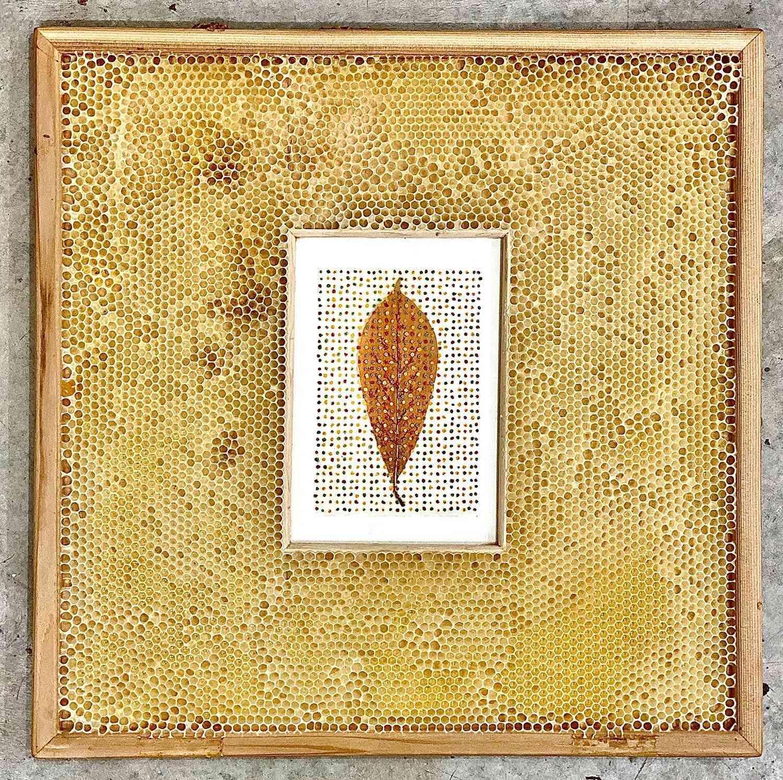 honeycomb honeybee art by Ava Roth