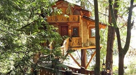 TreeHouse Workshop of Seattle