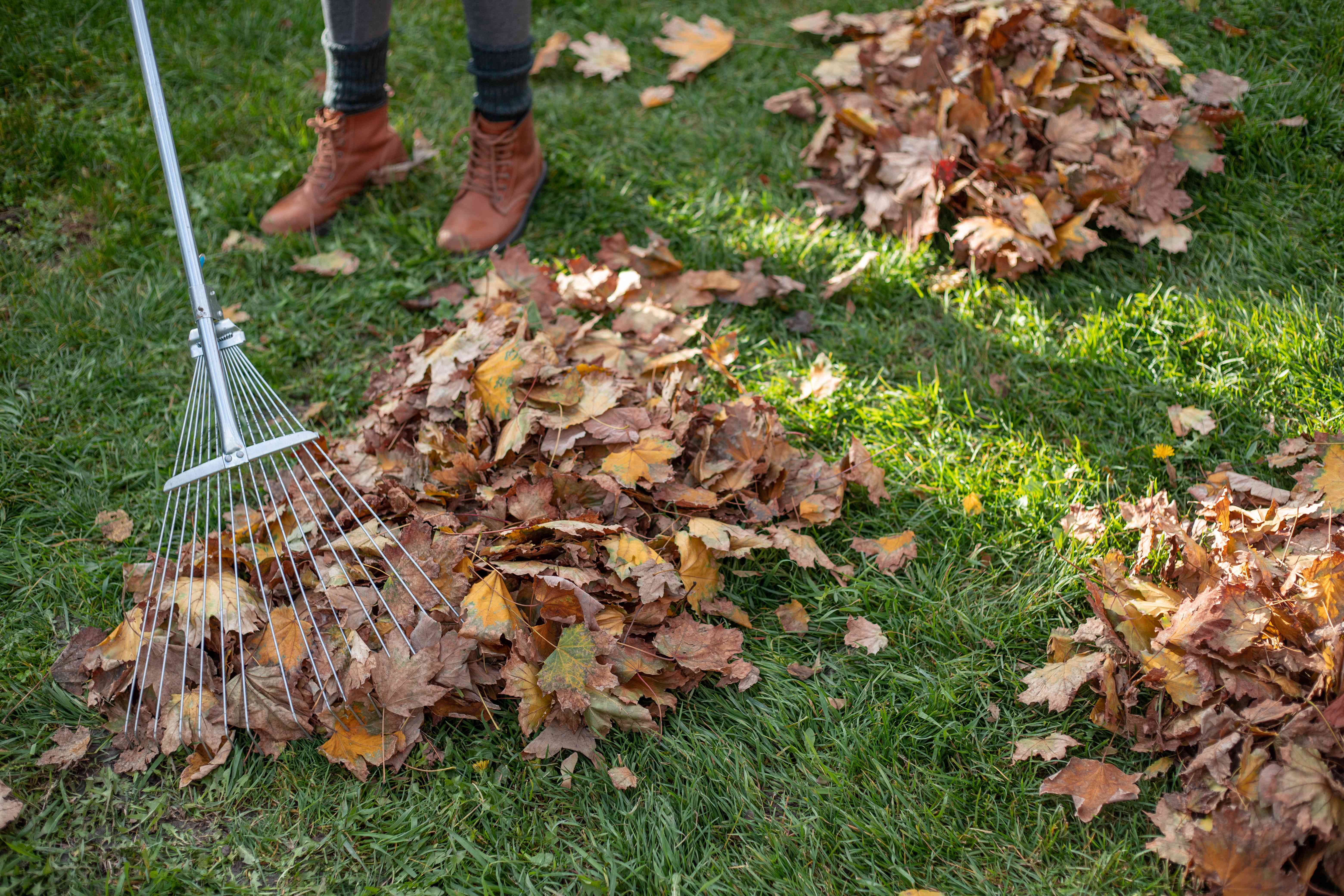 person's feet with rake and piles of leaves