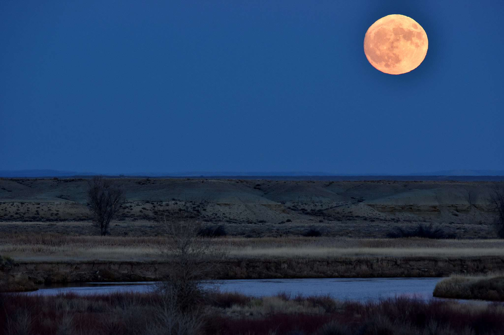 a full moon rises over a wildlife refuge in Wyoming