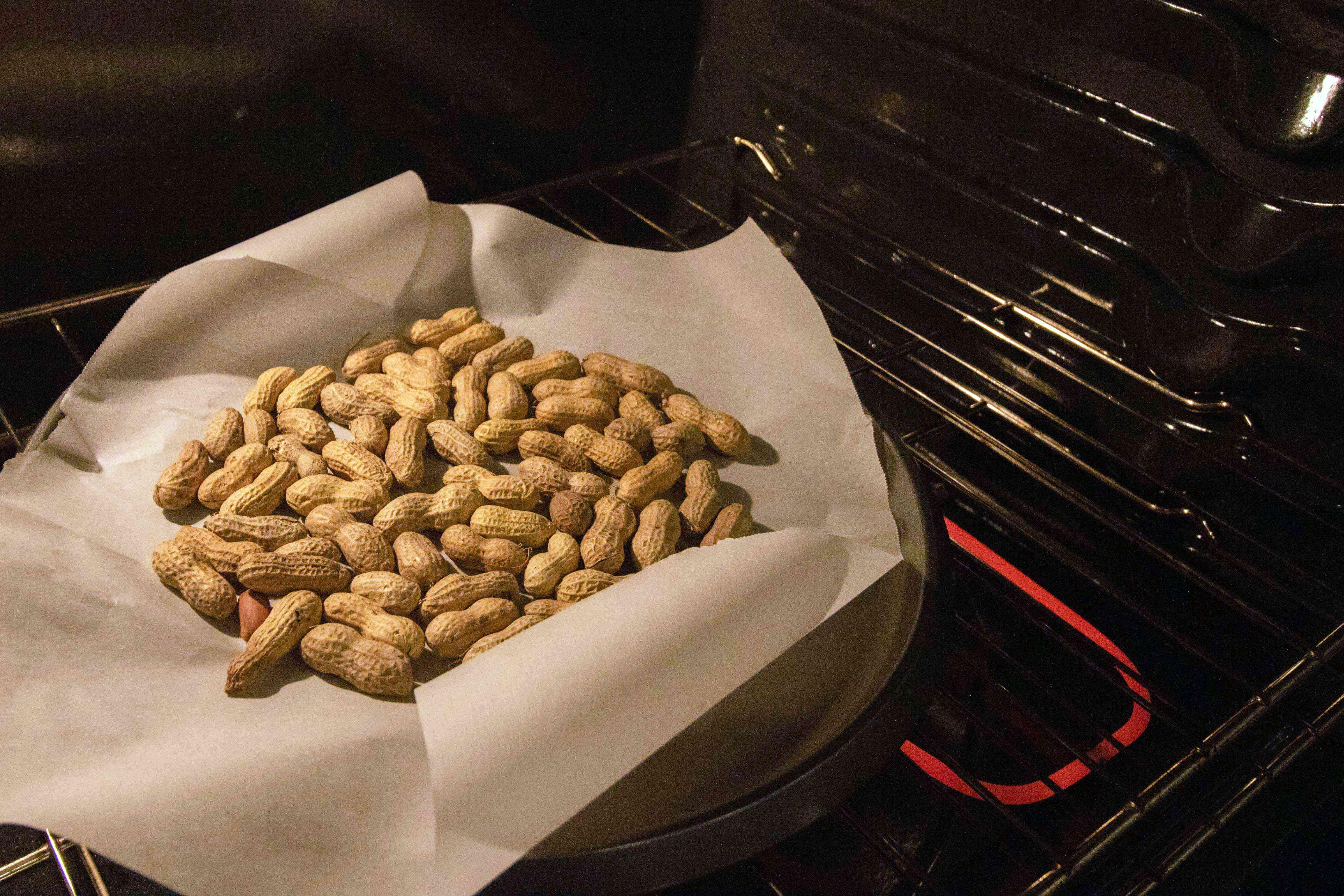 freshly harvested peanuts are baking in open oven door