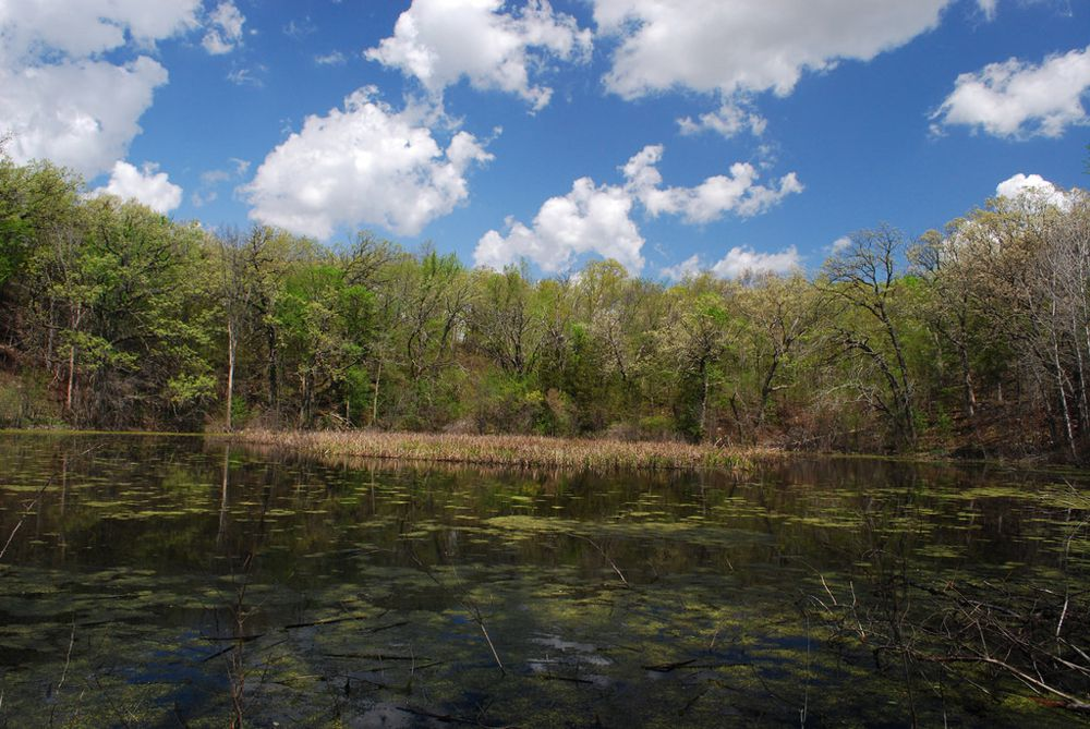 A pothole lake in Wisconsin State Natural Area No. 66