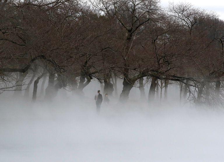 Fenómeno meteorológico raro activa alertas de calidad del aire en DC