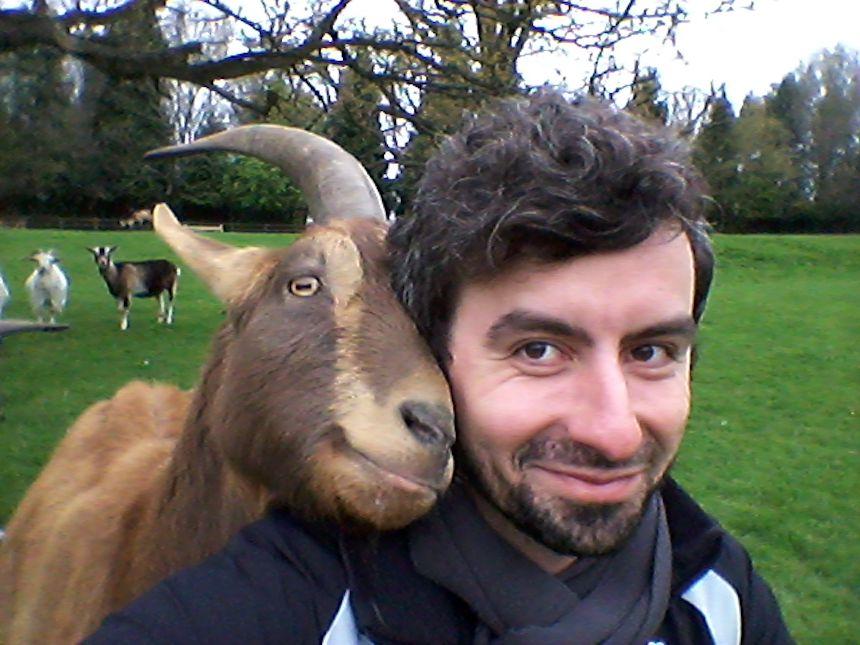Human goat bond