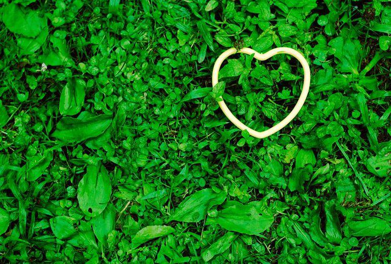 14 maneras de ser ecológico este día de San Valentín
