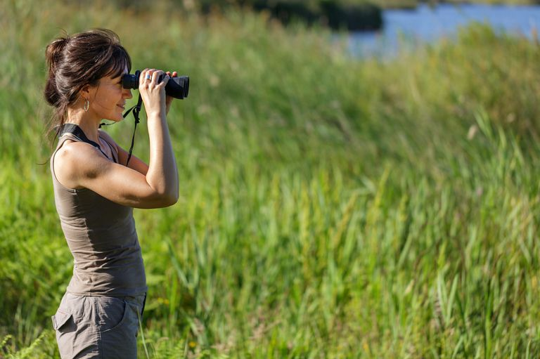 woman watching birds with binoculars
