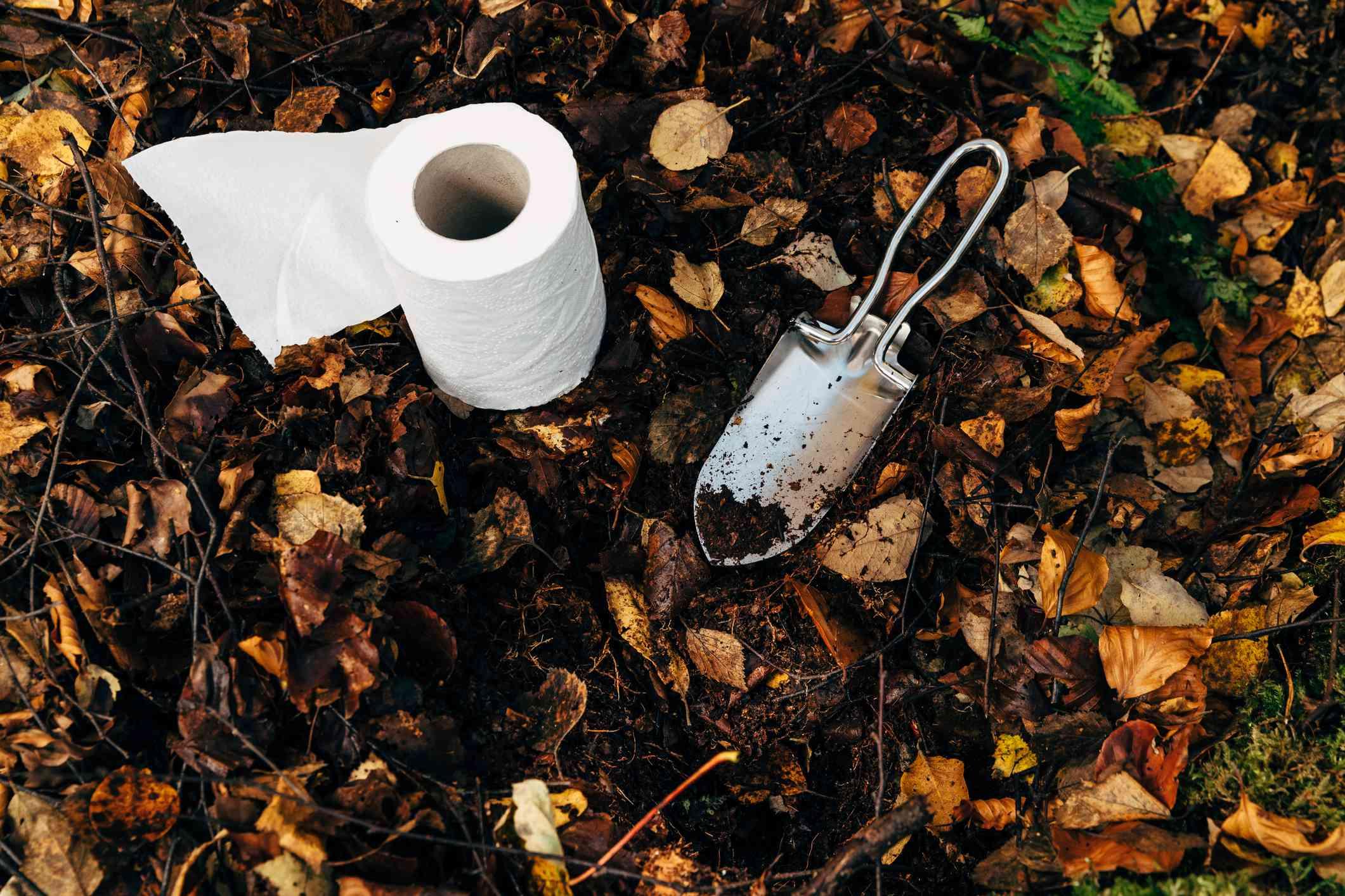 Preparing outdoor bathroom break with shovel and toilet paper