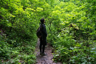 person stands alone on dirt path in middle of forest surrounded by undergrowth and green trees
