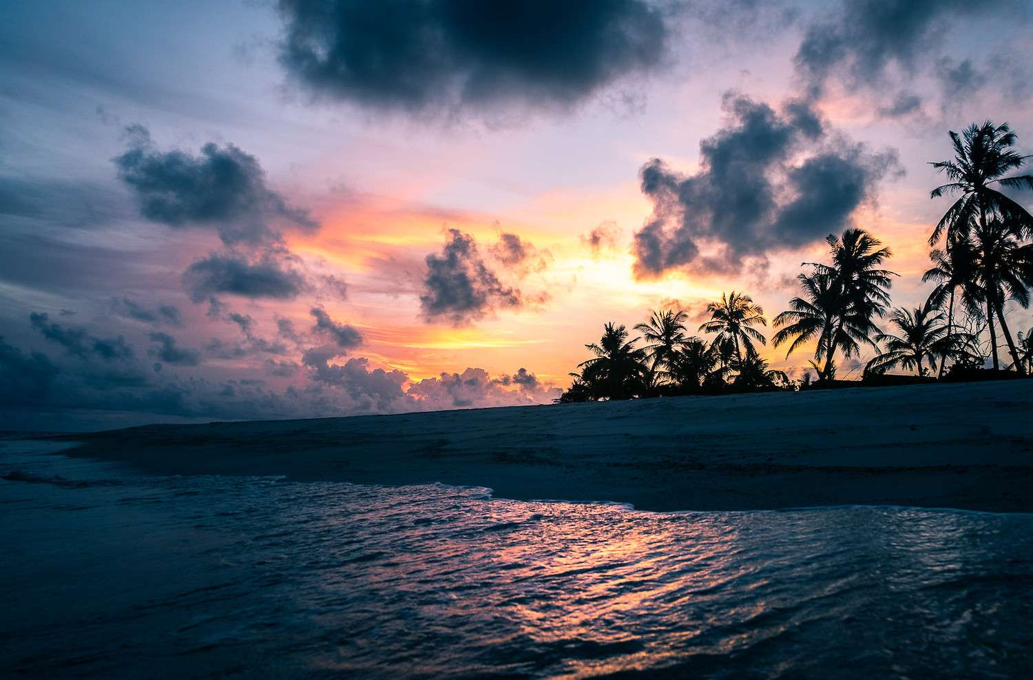 The sun sets of a beach with silhouetted palm trees in the Maldives