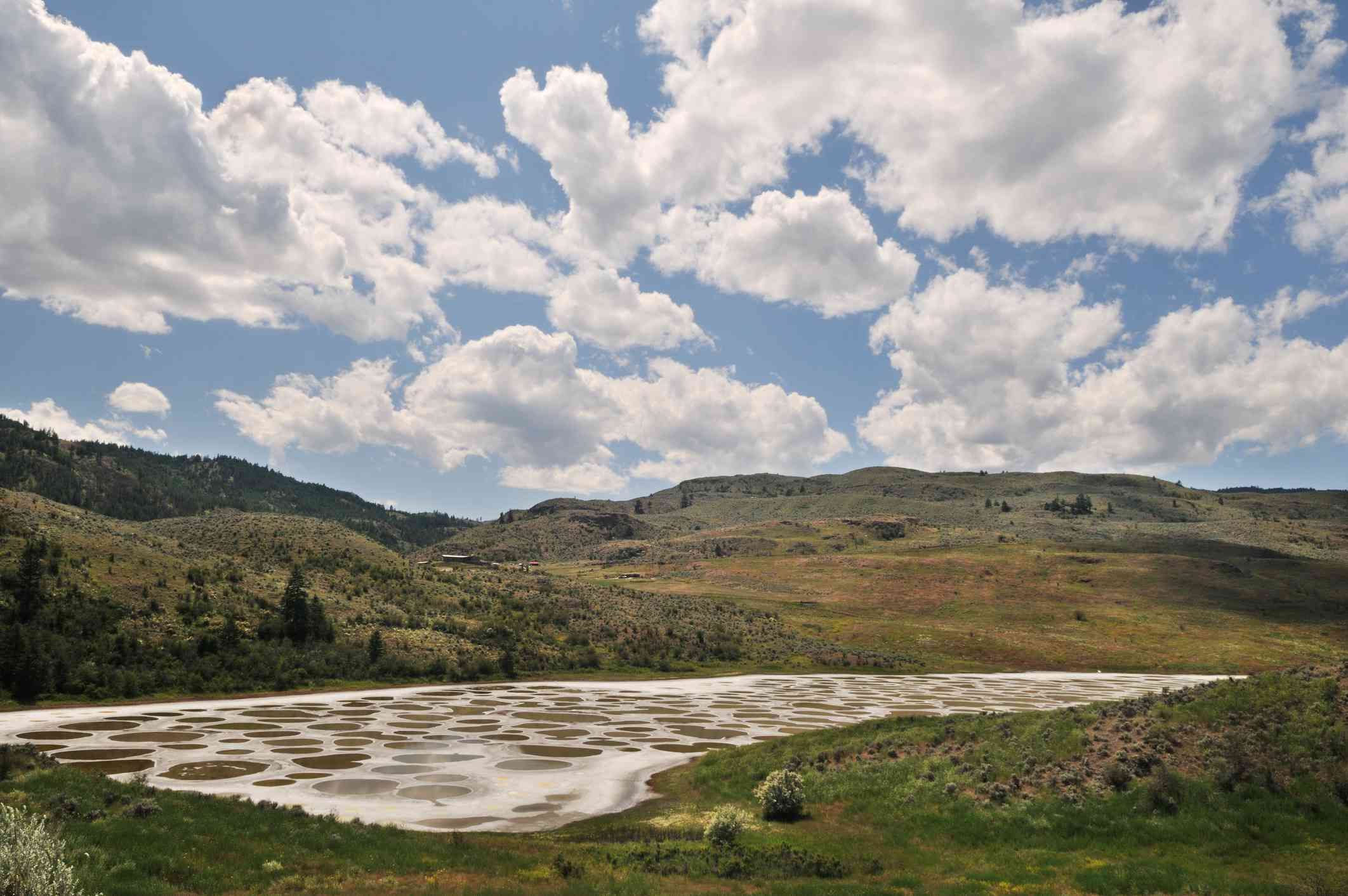 Mineral deposits form circles in a mostly evaporated lake