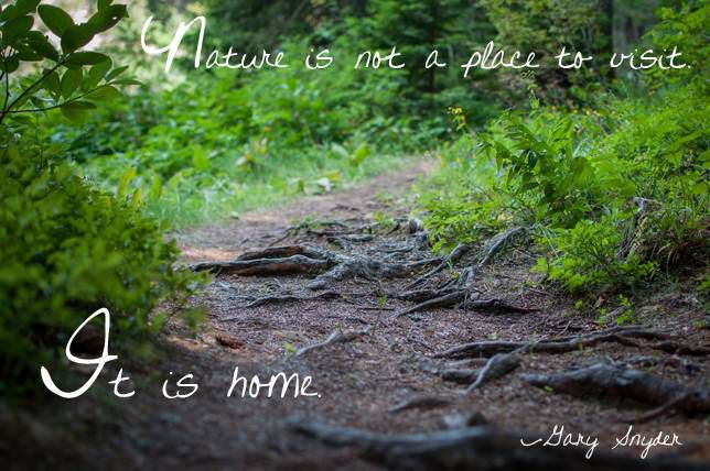 Nature is not a place to visit. It is home. Gary Snyder