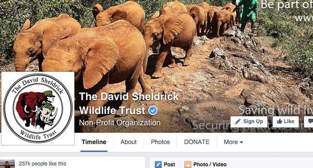 The David Sheldrik Wildlife Trust