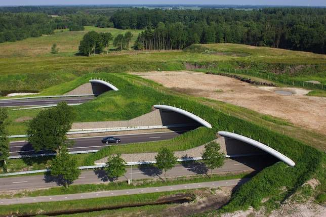 Aerial view of a animal or wildlife overpass crossing a highway