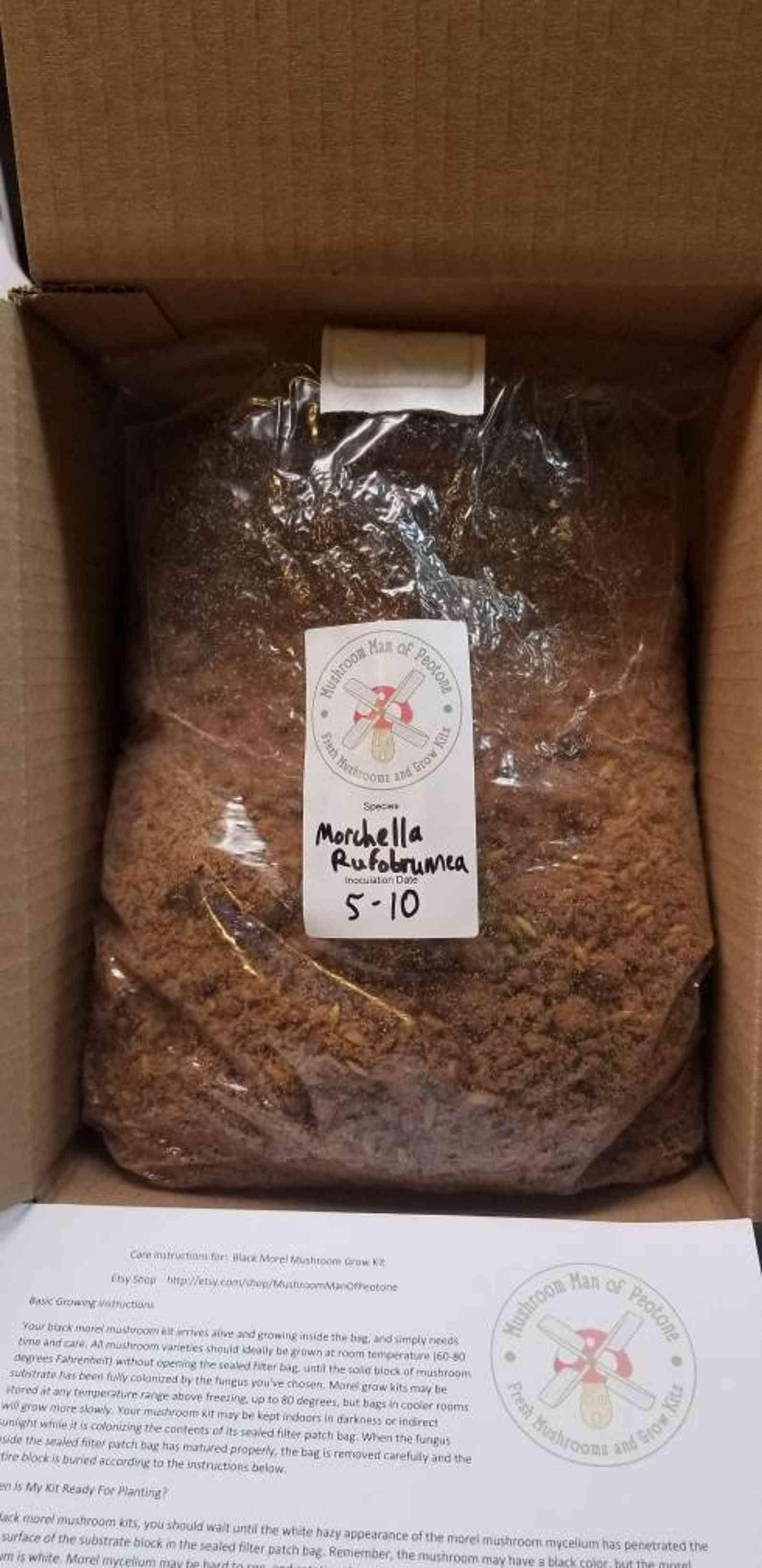 Mushroom Man Of Peotone Morel Mushrooms Grow Kit