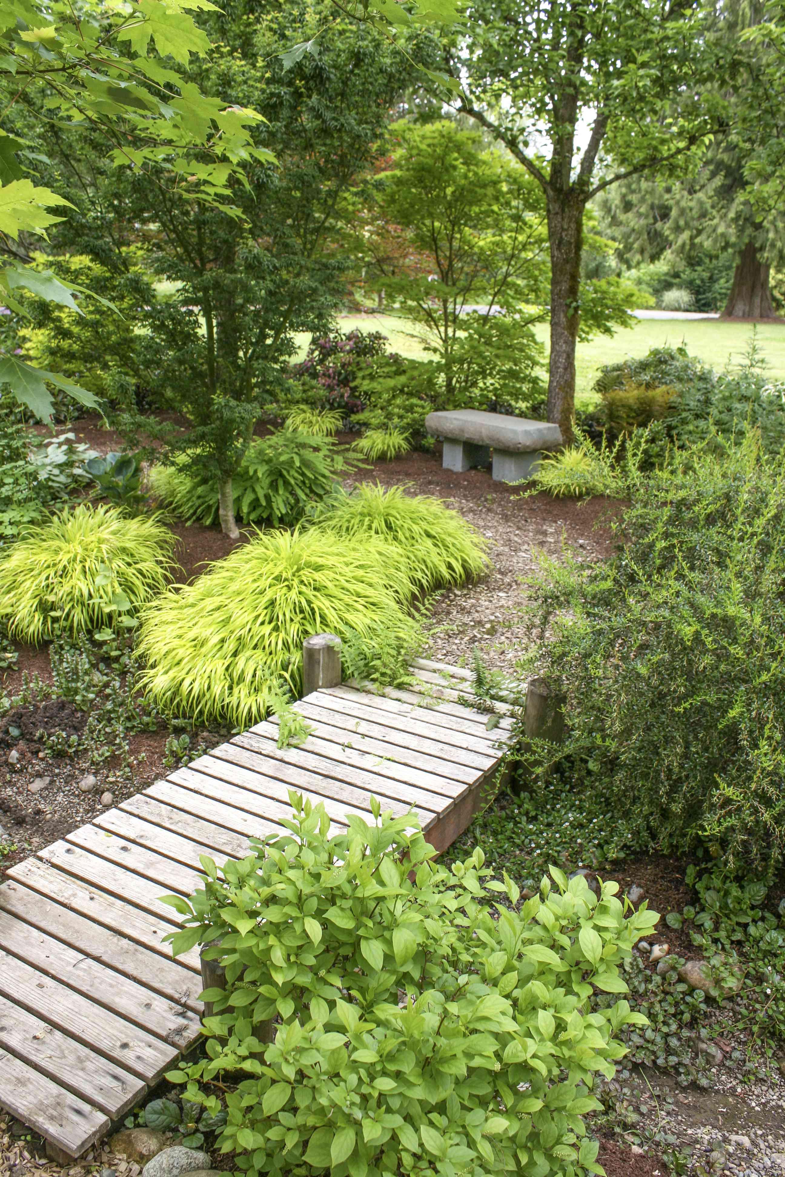 garden with bridge