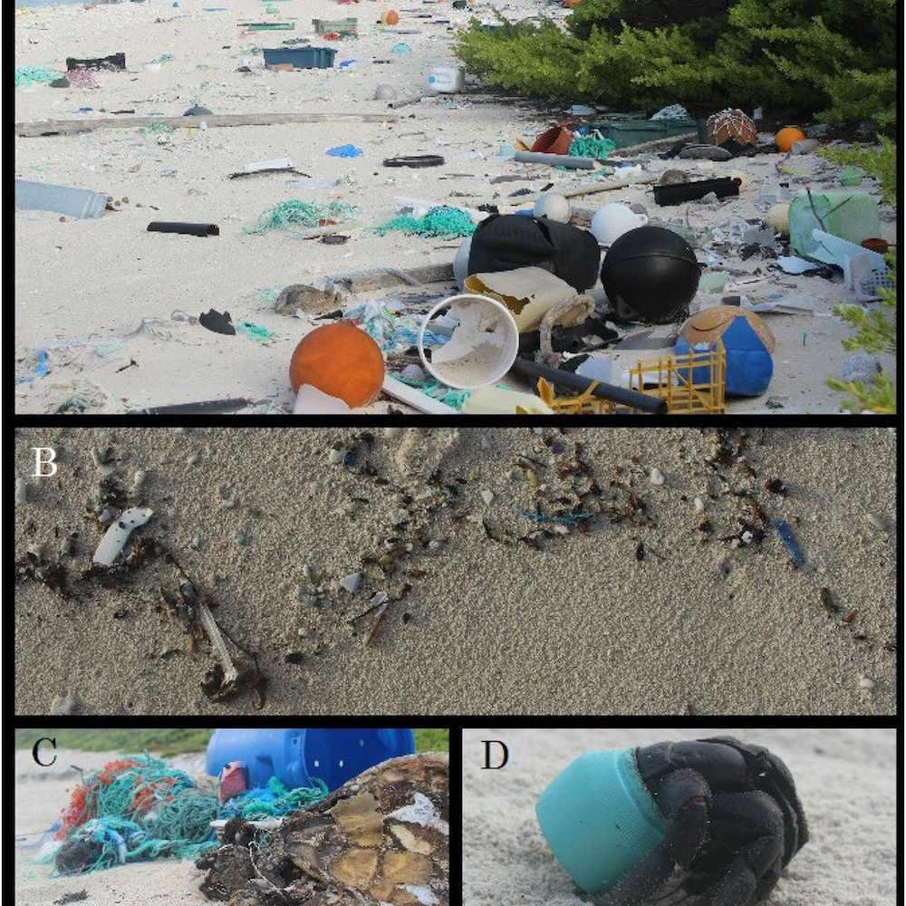 plastic debris on Henderson Island