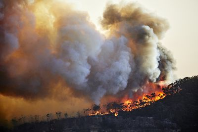 Out of control fire on Narrow Neck Plateau, Katoomba, Blue Mountains, Australia. Climate change is causing extreme weather, prolonged droughts and increasing bushfires