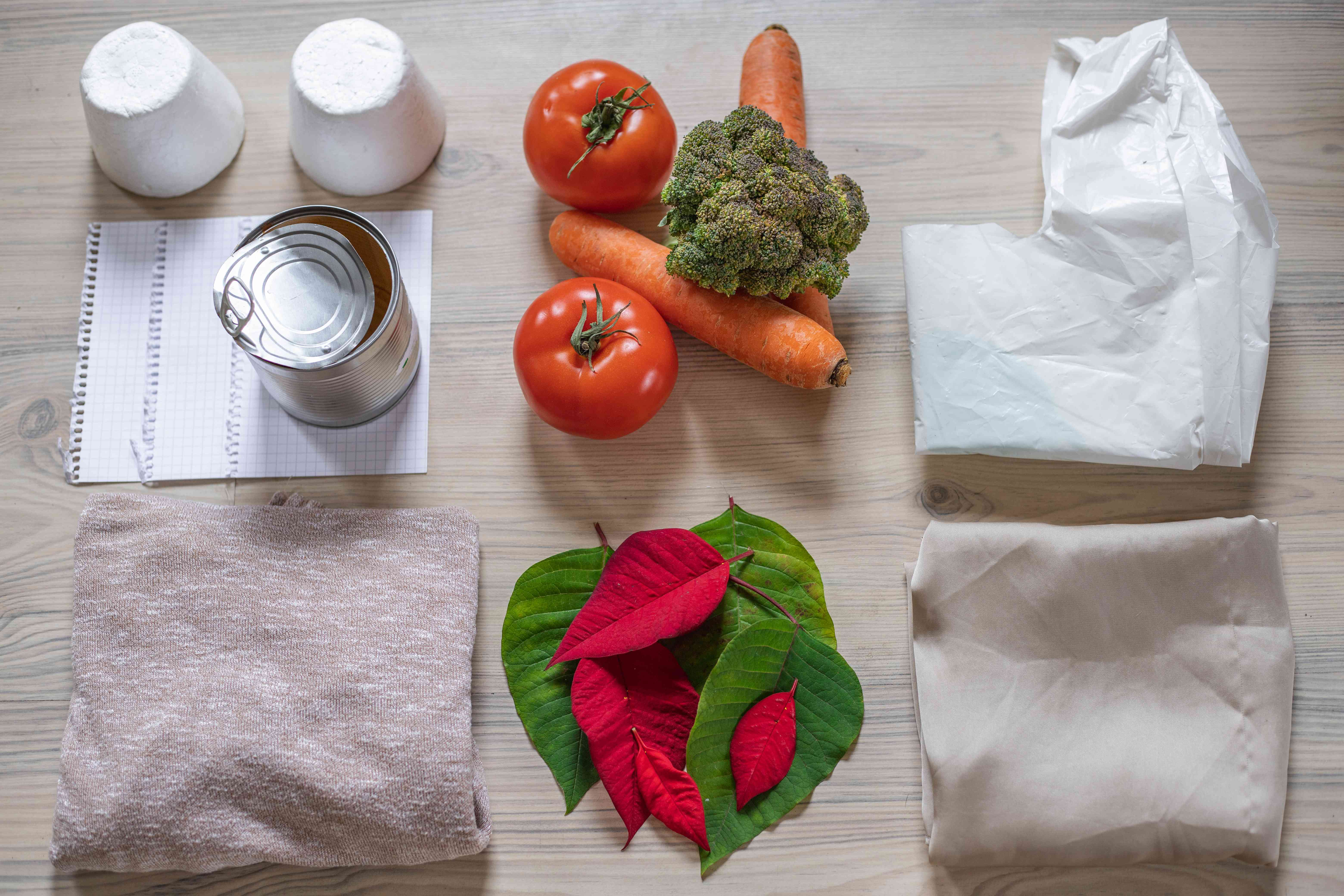 flat lay contrasting household items that are easily biodegradable as well as manmade