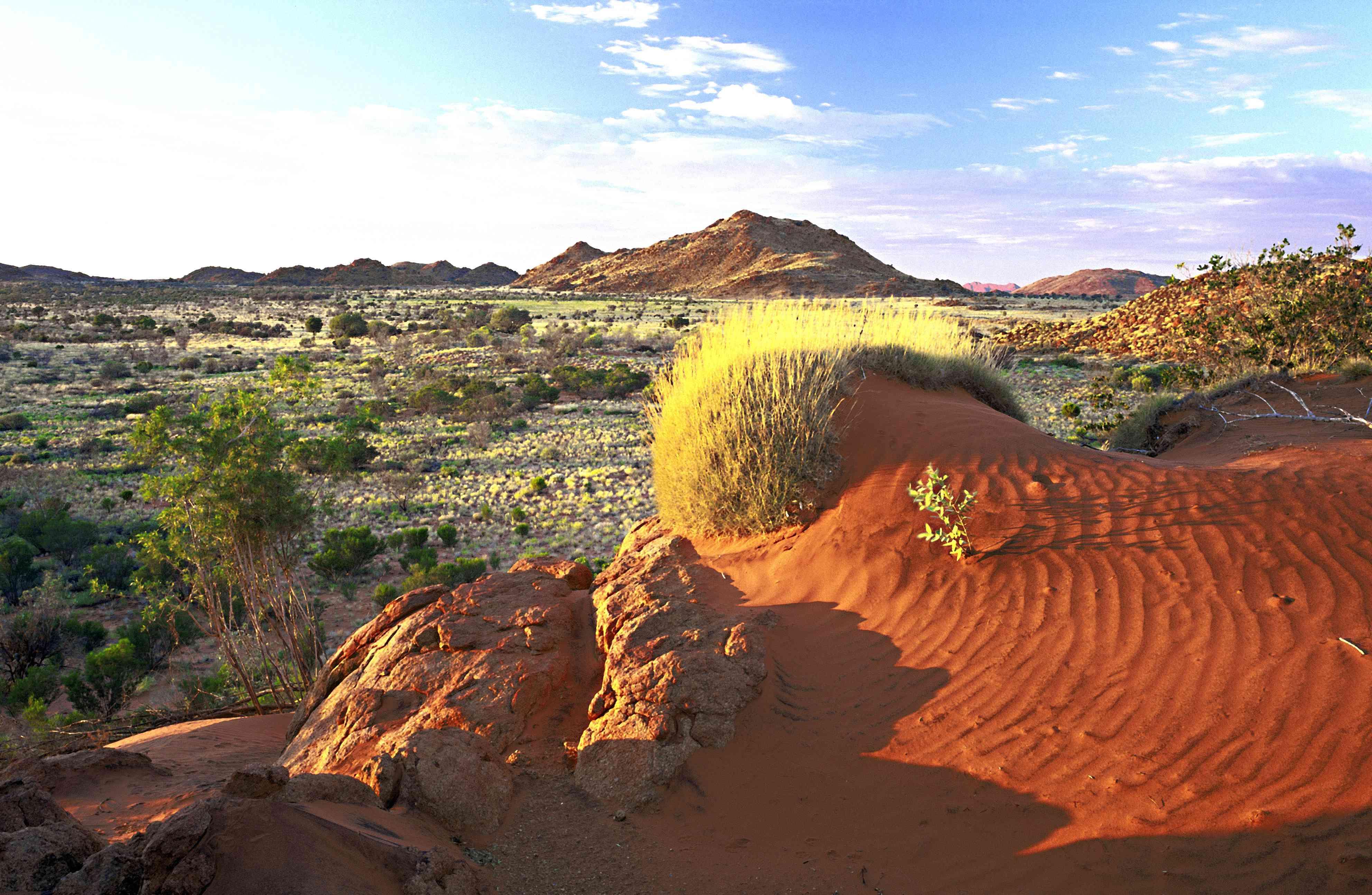 Landscape of the Great Victoria Desert in Australia