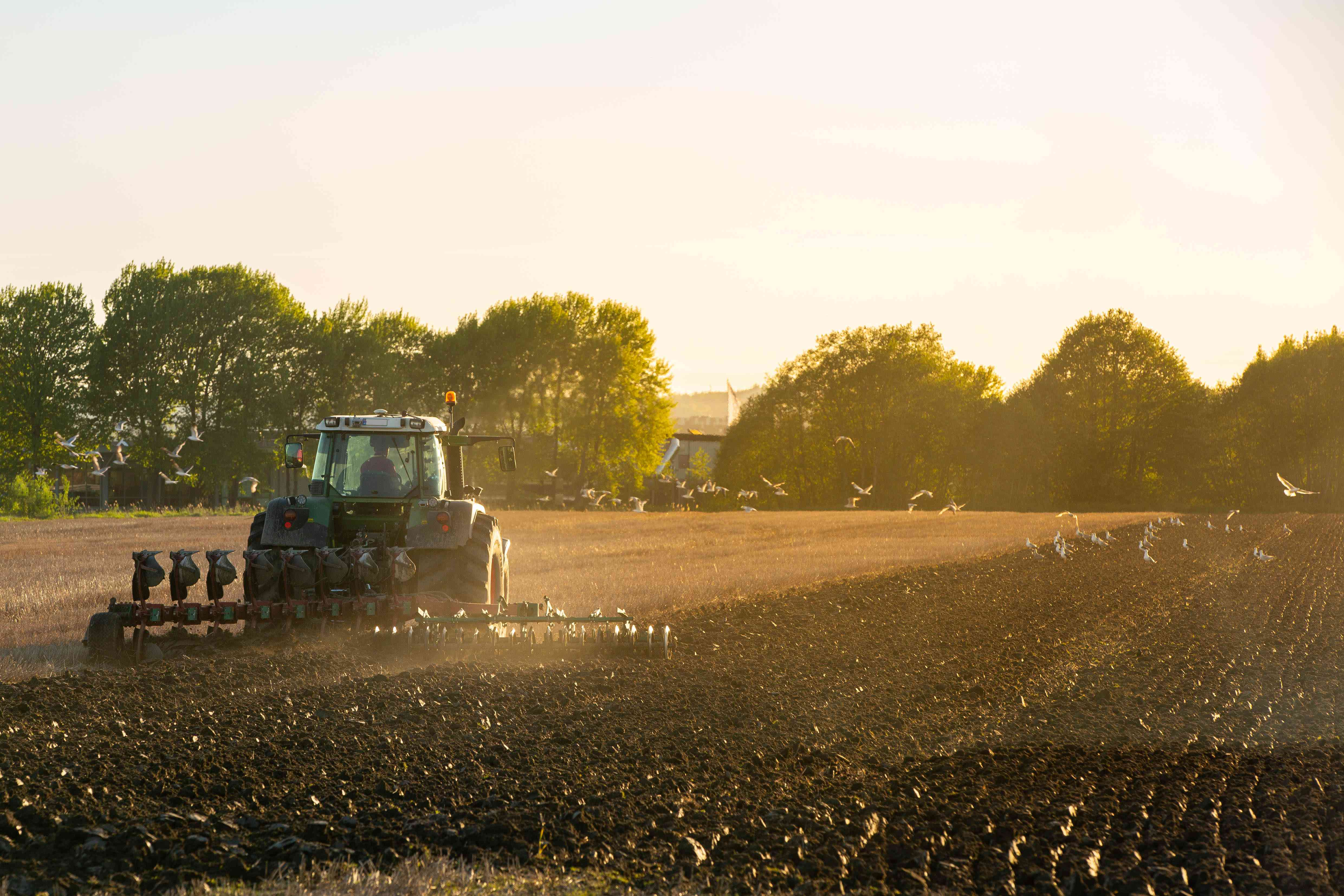 Springtime and time for plowing soil