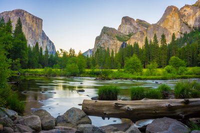 A blue sky above a verdant Yosemite Valley