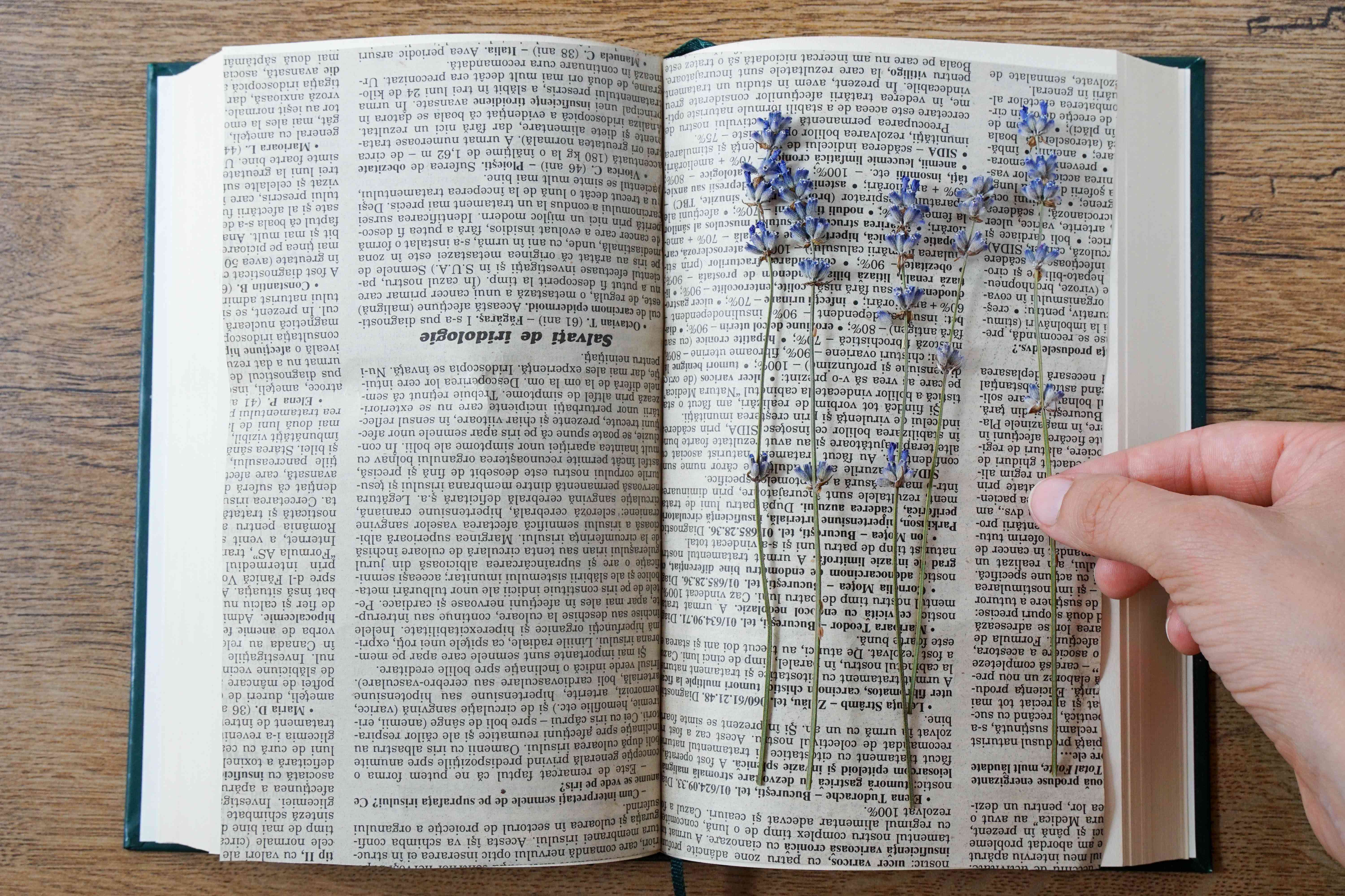 hand removes dried pressed flower from open book