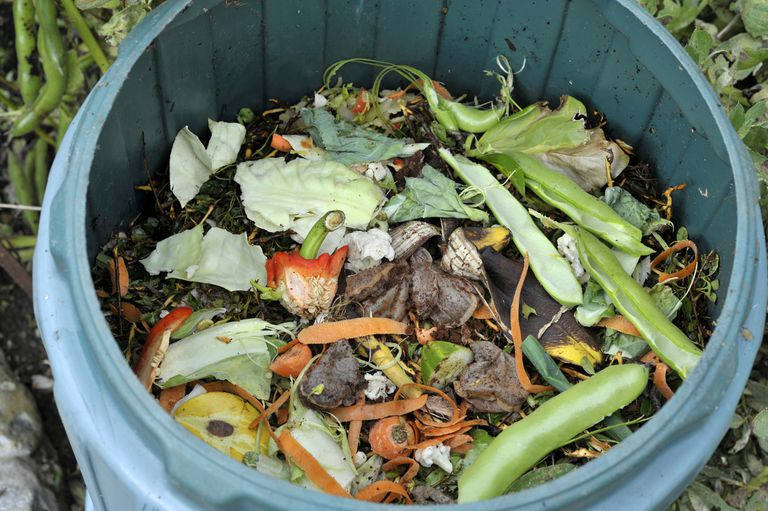 Kitchen waste in a compost bin