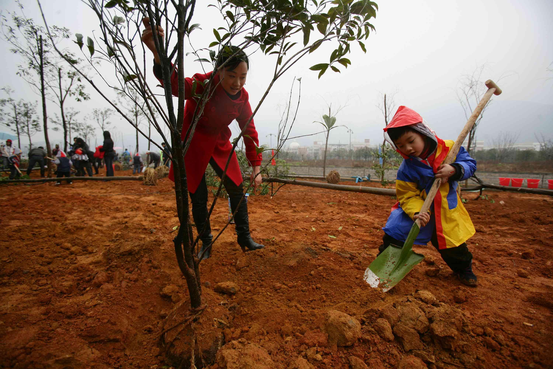 China Marks Tree-planting Day