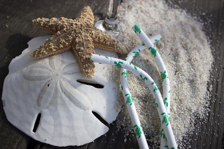Haz que las pajitas apenen menos: Cámbiate a estas de papel que ayudan a financiar la investigación de las tortugas marinas